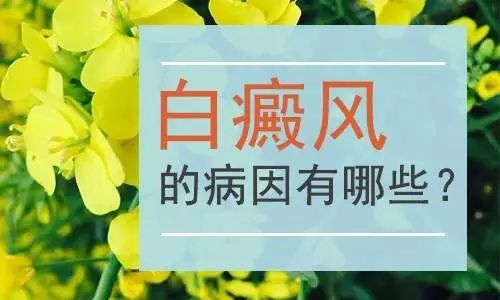 了解<a href=http://https://www.meisbuy.com/bingyin/ target=_blank class=infotextkey>白癜风病因</a>,更好保护自己的身体健康。